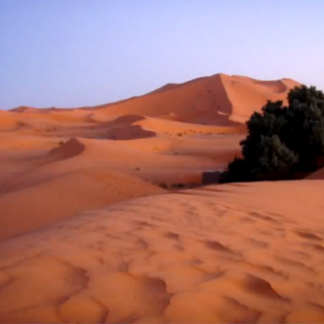 Morocco's Tour