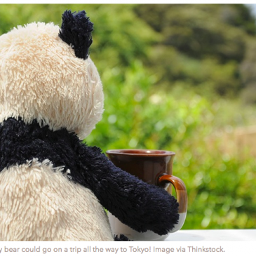 Travel Agency take your stuffed Animal on Vacation