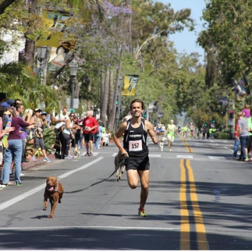 State Street Dog Mile …