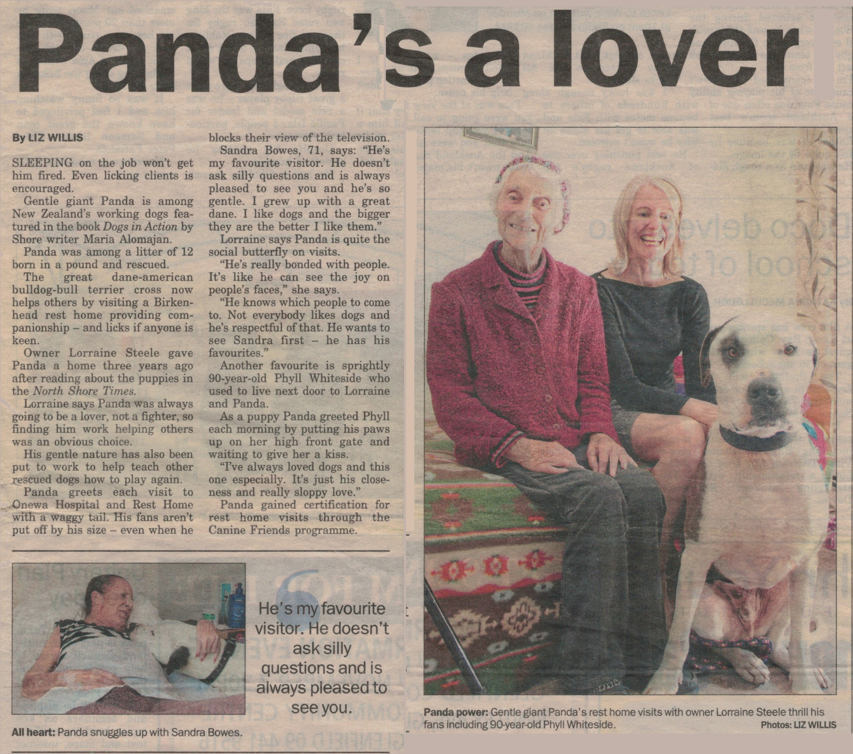 pandas-a-lover