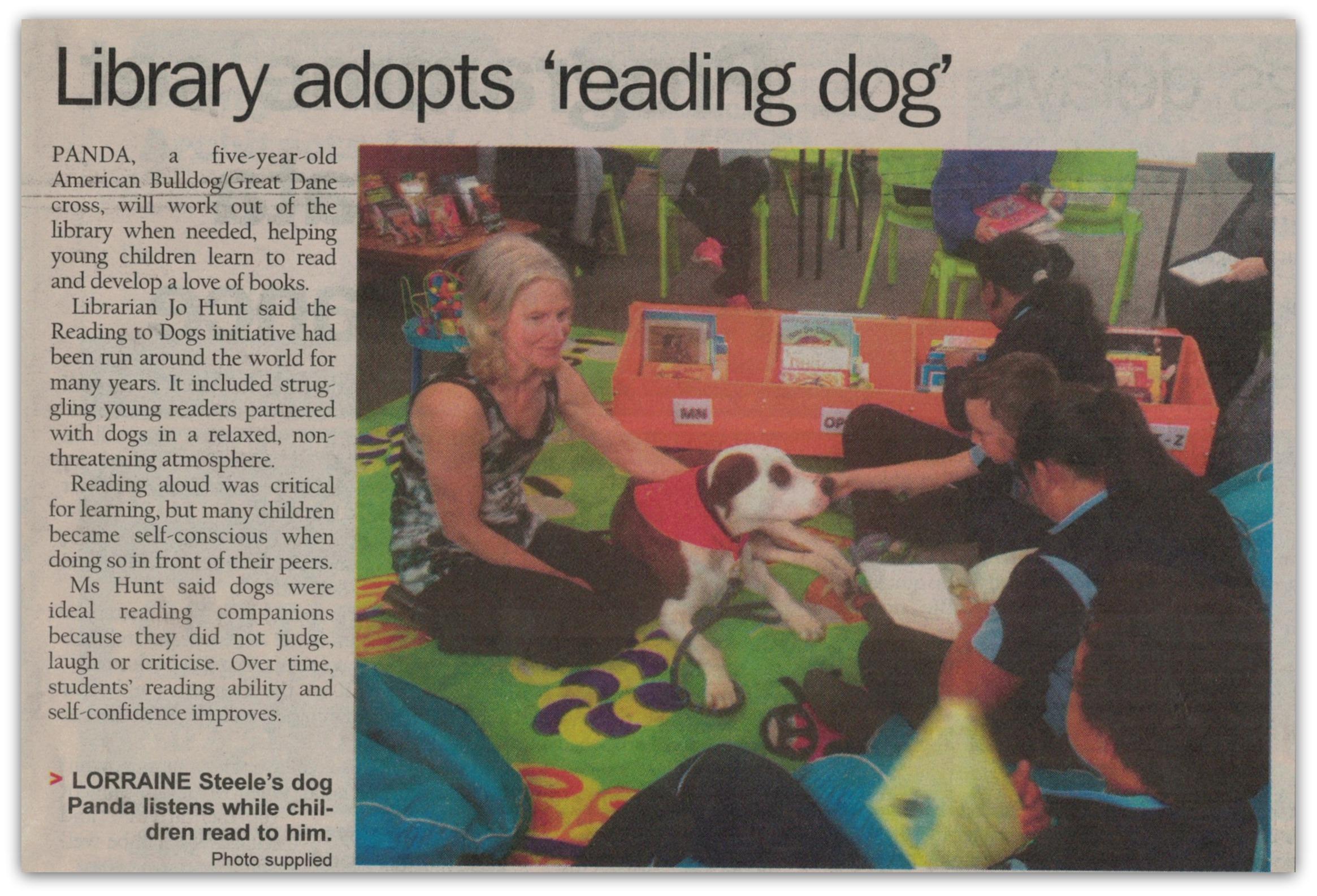 readingdog